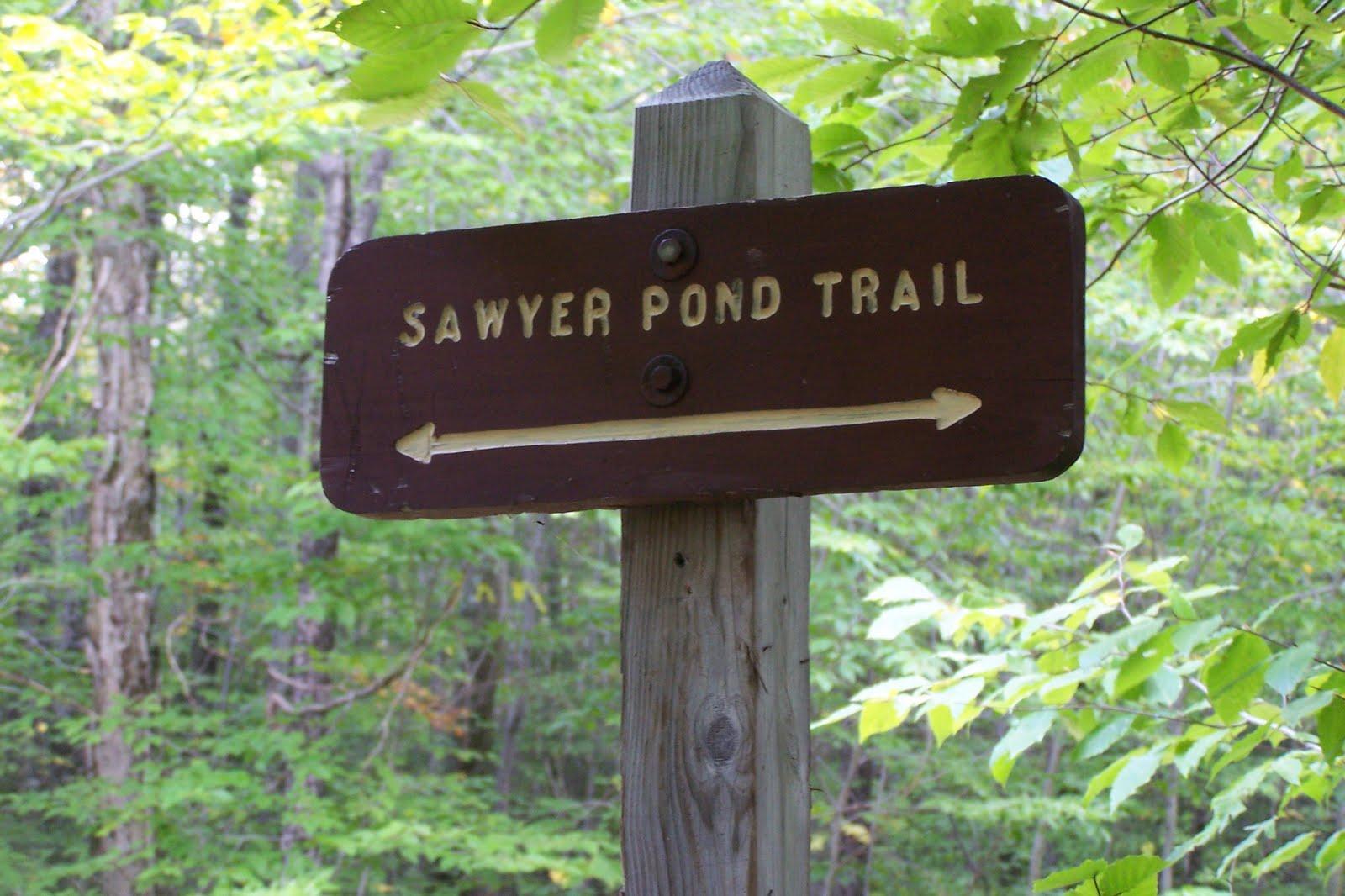 Plan de voyage pour se rendre au Lac Sawyer