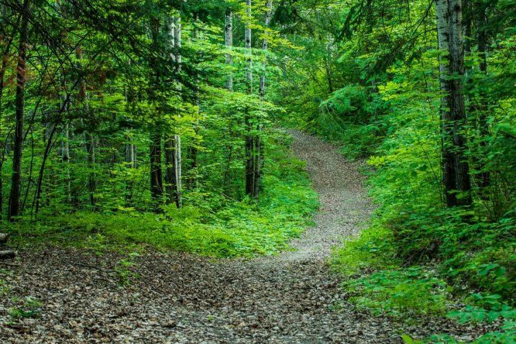 Comment choisir ses sentiers de randonnée ?